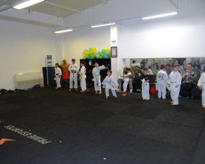 Taekwondo-Folha de Santa Catariba
