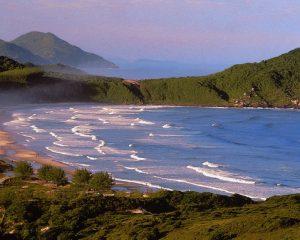 Praia do Rosa - SC - Folha de Santa Catarina